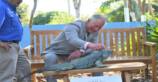 Prince Charles laughing iguaanille - the weekend the best photo series comes this