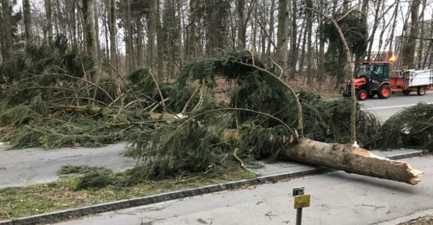 Storm Bennet sweeps with up to 148 km/h over Switzerland