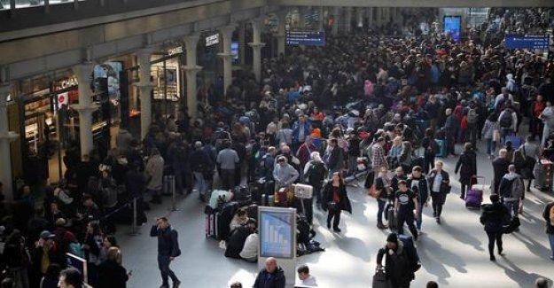 Sturgeon action in London: intruder puts the brakes on Eurostar