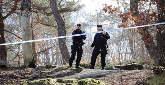 Suspicious object in the wooded area in Gothenburg