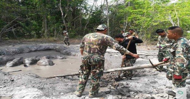 Thailand: Elefantungar saved from the mud streams