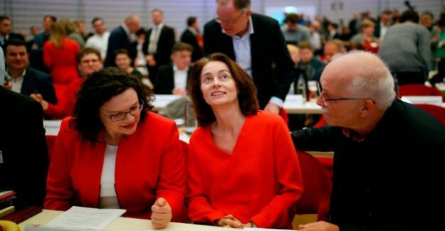 The fight to right-wing populists : the SPD decides Europe-choice program