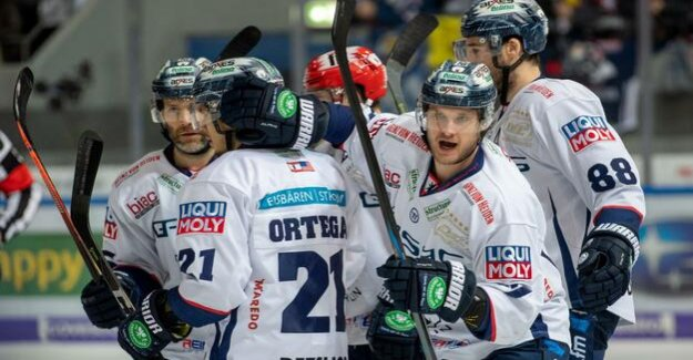 Victory in Munich : polar bears remain in the Play-Off race