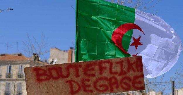 Algeria in the face of the interim government