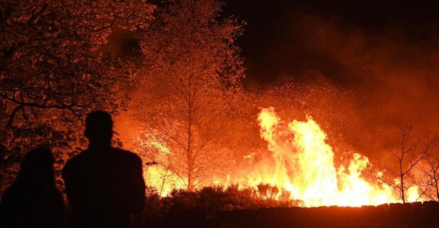 An unusual number of forest fires in Northern europe