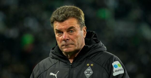 At the end of the cooperation, to the end of the season : Borussia Mönchengladbach, and Dieter Hecking separate