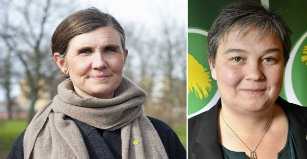 Battle on the new party secretary of the green Party