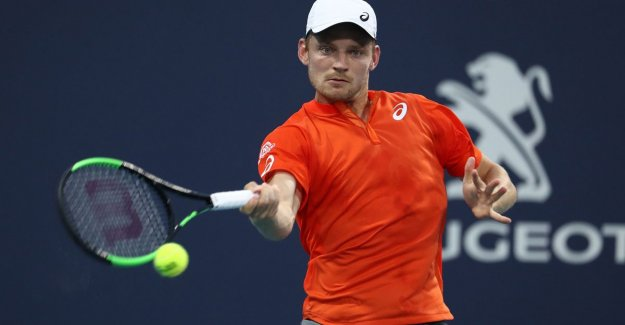 David Goffin drops place on ATP ranking, Elise Mertens rises in doubles to highest spot ever