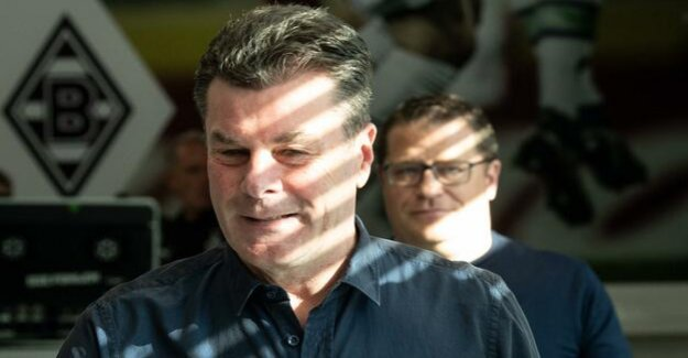 Dieter Hecking and Borussia Mönchengladbach : in The end there is no love in marriage