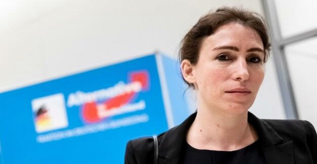 Election of the Bundestag Vice-President : Young SPD members of Parliament AfD candidate for non-selectable