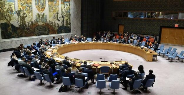 Germany takes over presidency of the security Council : foreign Minister Maas wants to strengthen global conflict prevention