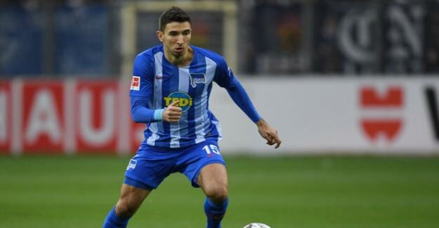 Hertha-BSC-Blog : Now Marko Grujic is