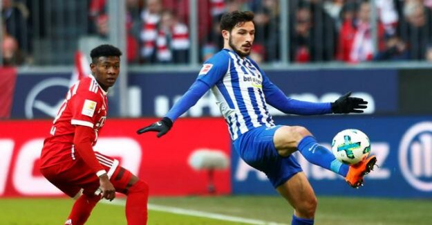 Hertha-BSC-Blog : With Leckie and Skjelbred against the Fortuna