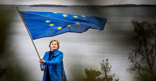 Karin Karlsbro (L): We want to hook the arm with the Macron on the euro