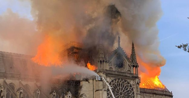 Large parts of the Notre Dame converted into ash