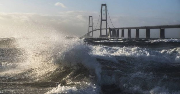 Man jumped out from the great belt Bridge: Now he will get the BIG fine