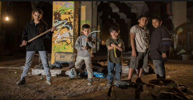 Movie review: Mexican street children encounter the ghosts of the great the Tigers are not afraid