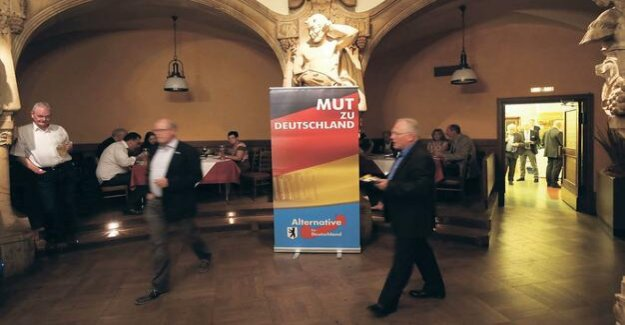 Party disclaimer : the AfD wants to get rid of Pankow faction chief economist son
