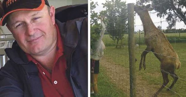 Paul, 46, was killed when the family's deer attacked