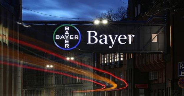 Savings program: 4500 Bayer employees need to go