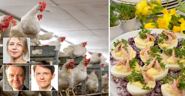 Select to remove the eggs in the easter – animals plagued