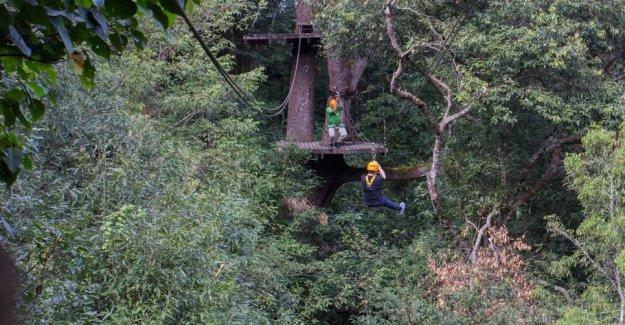 Tourist death in paradise: Svævebanes cable broken