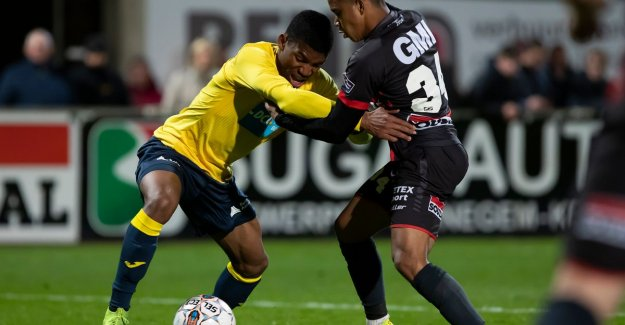 VIDEO. Westerlo and Beerschot-Wilrijk share again the points: seventh draw in nine meetings