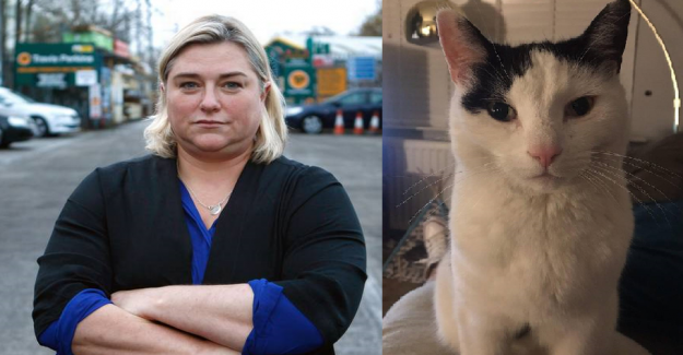 Woman in bizarre banner-war: the Diy store has made my cat depressed