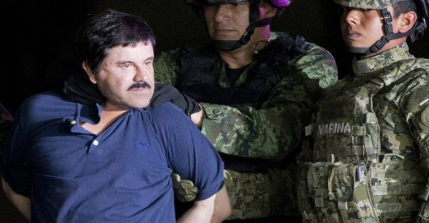 World-renowned drug lord in attention-grabbing change in career