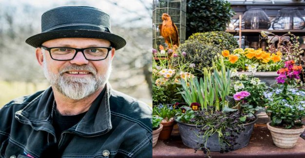 Bosse Rappne: so you save the plants from frostnätterna