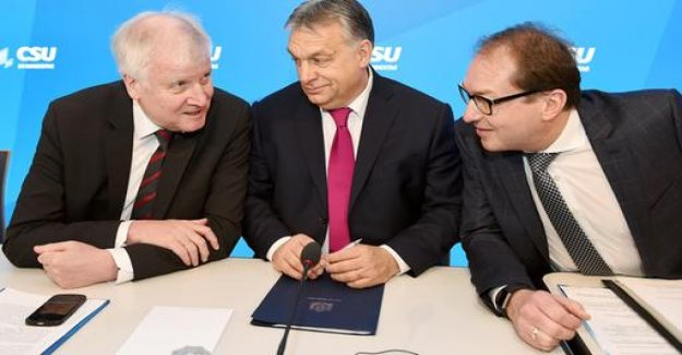 Breaking with the EPP: Dobrindt Orban is not giving up yet