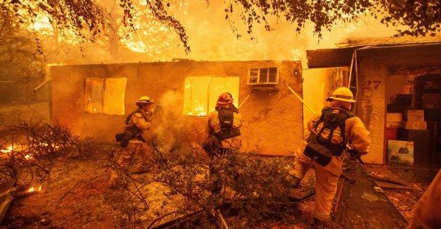 Electricity behind California's deadliest fire