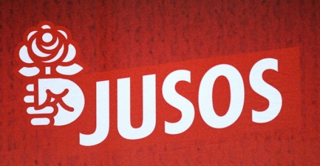 Fierce criticism of Dosenwerf action of the Jusos