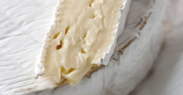 French cheese recalled after e. coli outbreak