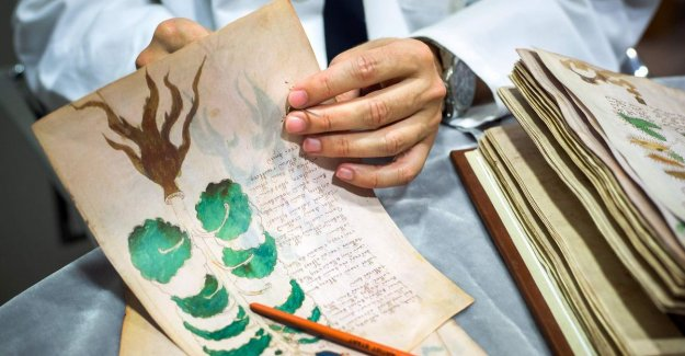 Mysterious manuscript has still not been deciphered: the university attracts statement in