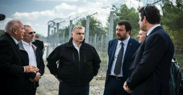 Orban urges Europe's Conservatives to cooperation with Salvini