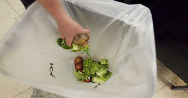 Researchers: higher targets for less food waste