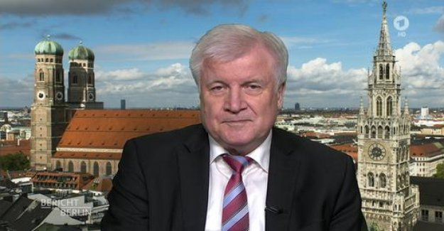 Seehofer rejects a collective return of IS fighters