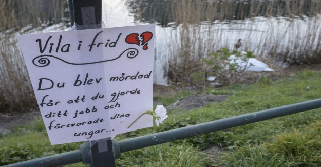 Shot angry swan – now switching Malmö tactics