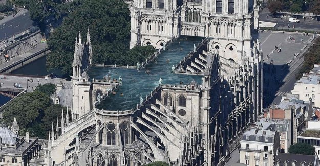 Swedish architectural firm proposes cross-shaped swimming pool on the vast Notre-Dame