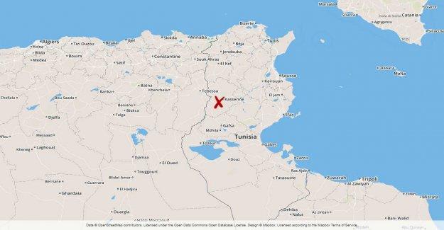 Three dead in tunisia raid