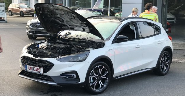 VIDEO. Brand new Focus lights in a Ford showroom: Thanks to attentive concierge is drama avoided.