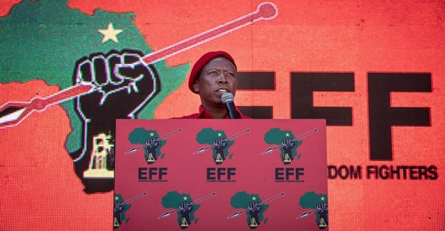 Vänsterpopulister on the rise in South africa's elections