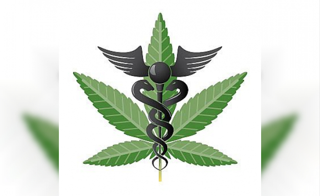 An Essential Guide to Medical Marijuana in New York