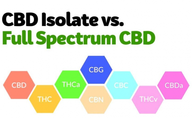 What Are the Differences Between Full-Spectrum and CBD Isolate?