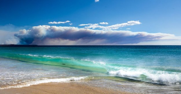 Australia Sydney region, warning of the catastrophic wildfires the threat for the first time ever