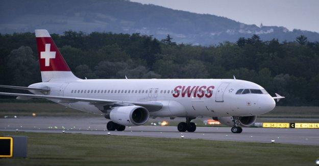 Swiss flies in the summer quarter more profit