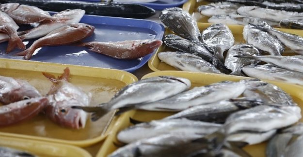 Eu, ok to the limits of the fisheries in the Mediterranean and Black Sea