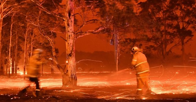 The fires in Australia, 4 thousand people fleeing the beaches