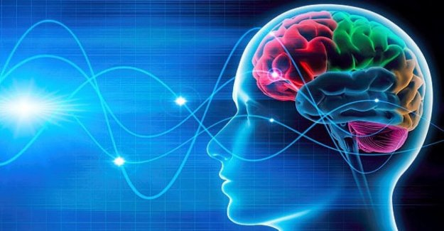 The new interface? Our brain. And will be the internet of the senses